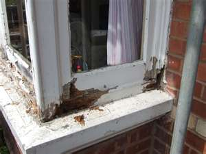 We install replacement windows
